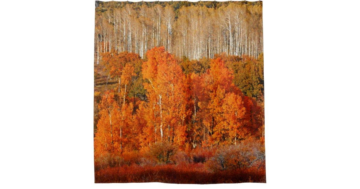 Autumn Fall Color Aspens Kolob Zion Shower Curtain Zazzle