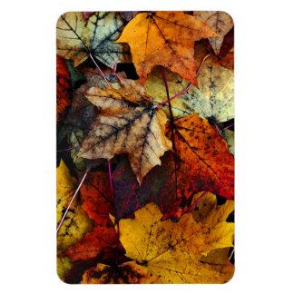 Autumn Fall Foliage Photography-Flexi Magnet