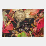 Autumn Fall leaves, chestnuts and mushrooms Hand Towels