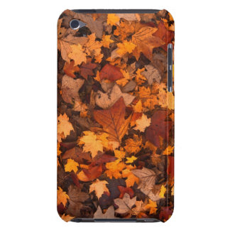 Autumn/Fall Leaves iPod Touch Cover