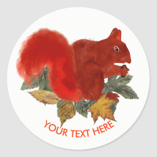 Autumn Fall Rustic Cute Squirrel Classic Round Sticker
