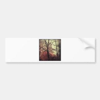 Autumn fall tree silhouettes car bumper sticker