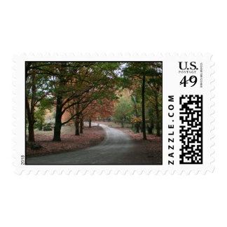 Autumn (fall) winding Road through leafy woods Postage