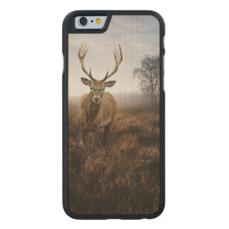 Autumn Fall with beautiful red deer stag Carved Maple iPhone 6 Slim Case