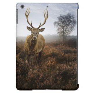 Autumn Fall with beautiful red deer stag iPad Air Cases