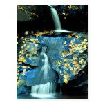 Autumn Falls, Smoky Mountain National Park, TN fro Post Card