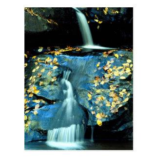 Autumn Falls, Smoky Mountain National Park, TN fro Postcard