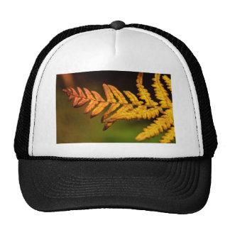 Autumn Fern Art Trucker Hat
