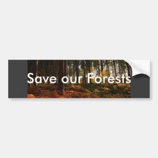 Autumn Ferns Bumper Sticker