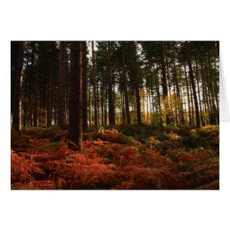 Autumn Ferns Card