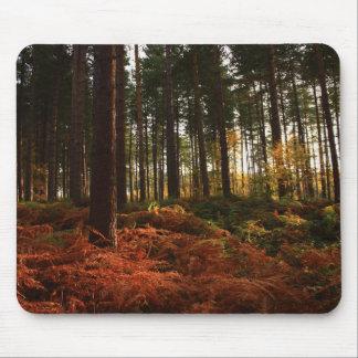 Autumn Ferns Mouse Pad