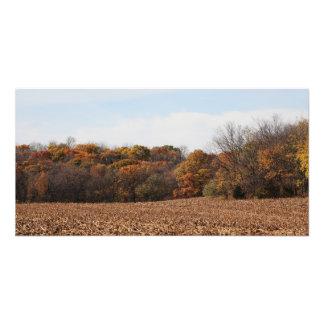 Autumn Field Photo Print