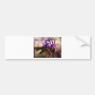 Autumn Flower Bumper Sticker