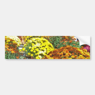 Autumn Flowers in Pots Bumper Sticker