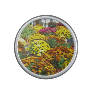 Autumn Flowers in Pots Speaker