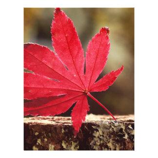 Autumn Flyer Design
