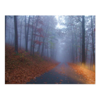 Autumn Fog Postcard
