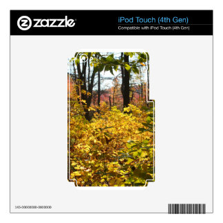 Autumn Foliage Decal For iPod Touch 4G