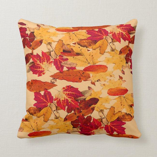 Autumn Foliage in Red Orange Yellow Brown