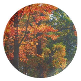 Autumn foliage party plate