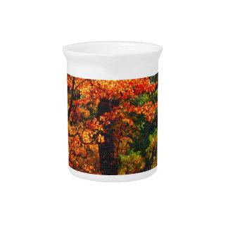 Autumn foliage pitcher