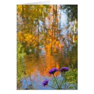Autumn Foliage Pond and Purple Flowers