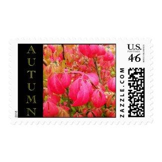Autumn Foliage Postage Stamp