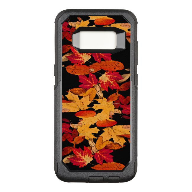 Autumn Foliage Red Yellow Brown Orange