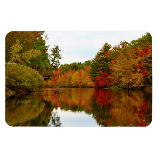 Autumn Foliage Reflections Rectangular Photo Magnet