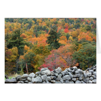 Autumn Foliage Stone Wall Photography Card