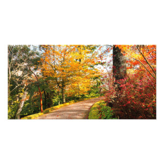 Autumn footpath in Azores Card