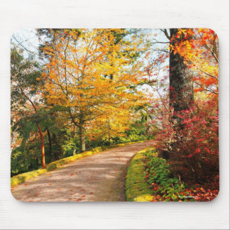 Autumn footpath in Azores Mouse Pad