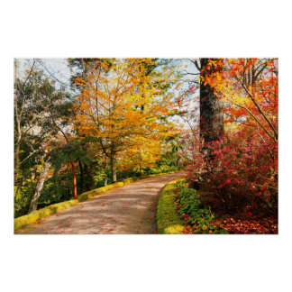 Autumn footpath in Azores Posters