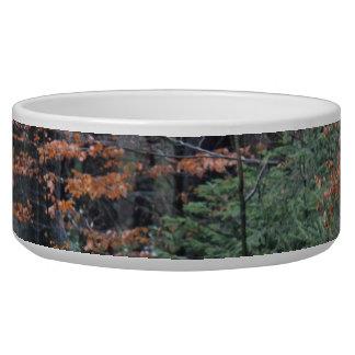 Autumn Forest Bowl