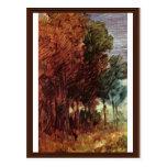 Autumn Forest By Busch Wilhelm (Best Quality) Postcard