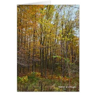 """Autumn Forest"" Card"