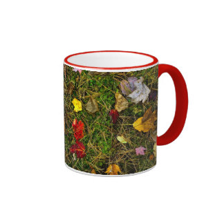 Autumn forest floor coffee mugs