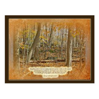Autumn Forest George Washington Carver Quotation Postcard