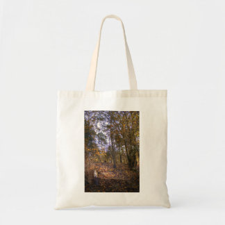 Autumn Forest HDR Canvas Bag