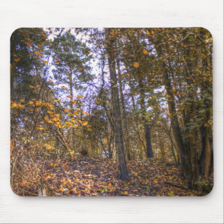 Autumn Forest HDR Mouse Pad