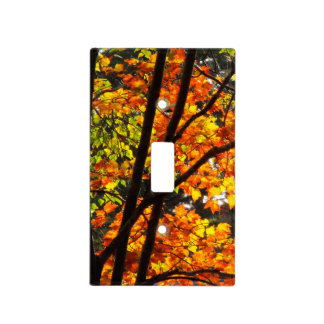 Autumn forest Lightswitch cover