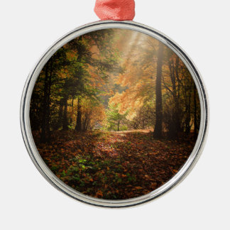 Autumn-forest Metal Ornament