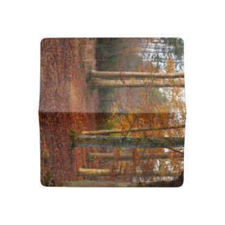 Autumn forest path checkbook cover