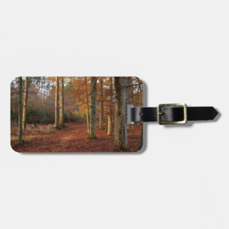 Autumn forest path luggage tag