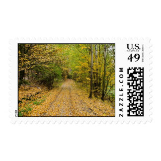 Autumn Forest Path Stamps