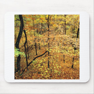 Autumn Forest Percy Warner Park Mouse Pad