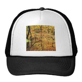 Autumn Forest Percy Warner Park Trucker Hat