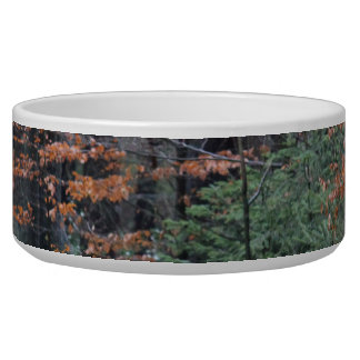 Autumn Forest Dog Food Bowls