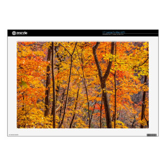 """Autumn Forest 17"""" Laptop Decal"""