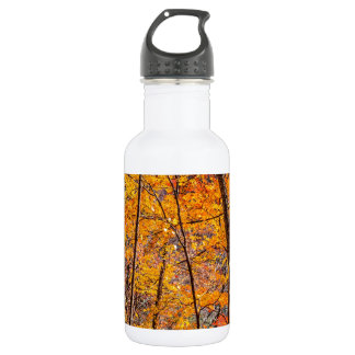 Autumn Forest Stainless Steel Water Bottle